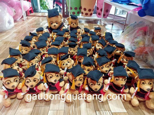 gấu bông tốt nghiệp cao cấp